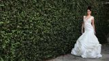 Woman by hedge wearing white wedding dress Footage