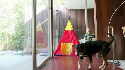 Young boy playing with dog near teepee Stock Video Footage