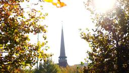 Orthodox church, park, sunny autumn, sound, lens flare Footage