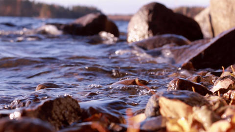 Water splashing on rocky shore with dried autumn leaves Footage