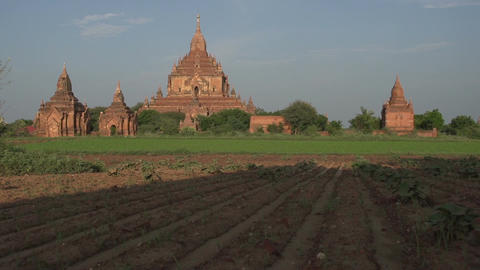 Temples and pagodas in Bagan Footage
