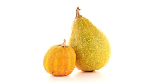 Pumpkins Footage
