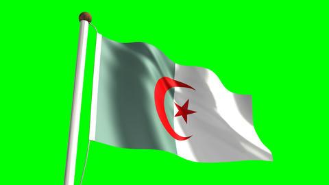 Algerian flag Animation