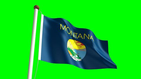 Montana flag Animation