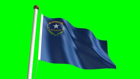 Nevada flag Animation