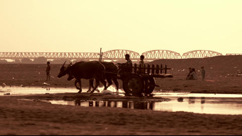 Burmese rural man driving wooden cart crossing the Irrawaddy river. Myanmar Footage