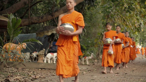 CHIANGMAI, THAILAND - DECEMBER 2014 : Buddhist calming monks and alms walking in Footage