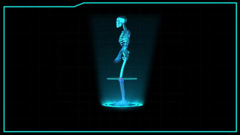 Science fiction medical design element rotating Skeleton presentation and search Animation