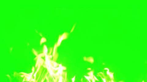 fire bottom chroma key Footage