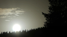 White sunrise sunshine and dark fir forest 23 Footage