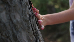 hand of a young woman touching a tree trunk Footage