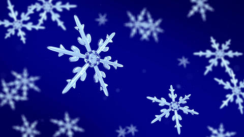 snowflakes focusing background blue Animation