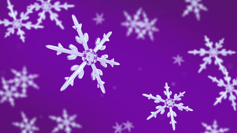 snowflakes focusing background purple Animation