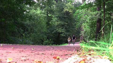 Cyclists in speed on a track landscaped in the woods 02 Footage