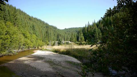 Horizontal panorama of the lake hardwood 79 Footage