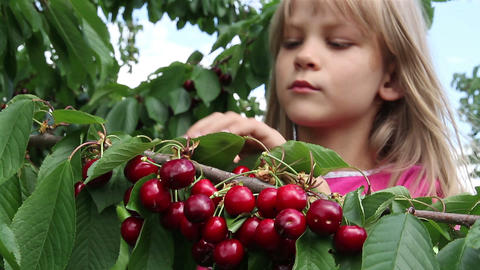 Girl and a cherry Stock Video Footage