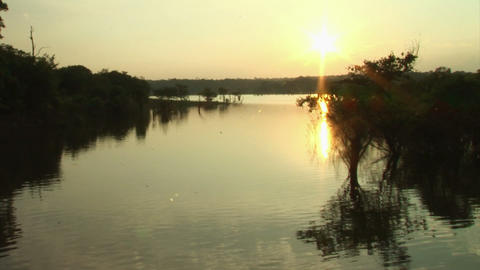 Brazil: travel on Amazon river 6 Stock Video Footage