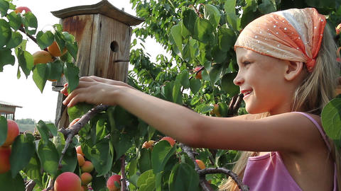 Girl and a apricots Stock Video Footage