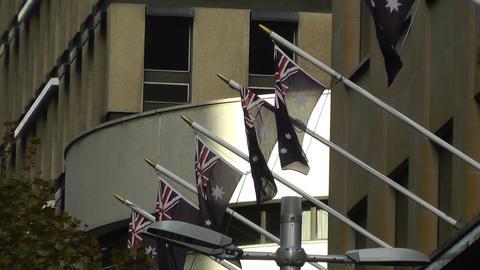 Australian Flags in Sydney Stock Video Footage