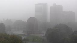 Heavy Rain in Sydney Hyde Park 02 Anzac Memorial Stock Video Footage
