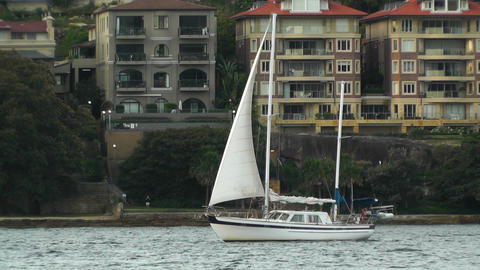 North Sydney view 07 sailboat Stock Video Footage