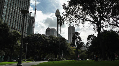 Sydney Hyde Park with Centrepoint Tower 01 Stock Video Footage