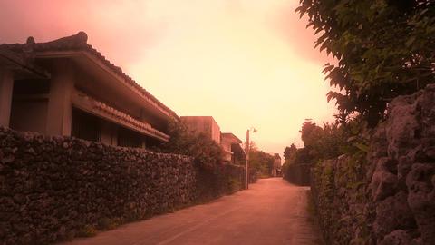 Taketomi Island in Okinawa stylized 01 Stock Video Footage
