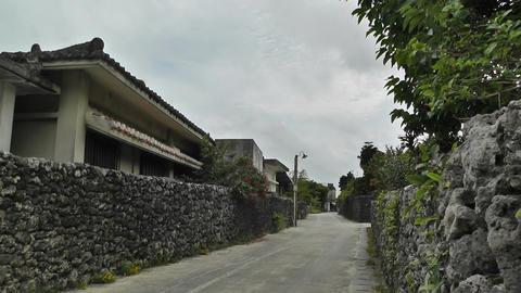 Okinawa Islands 2