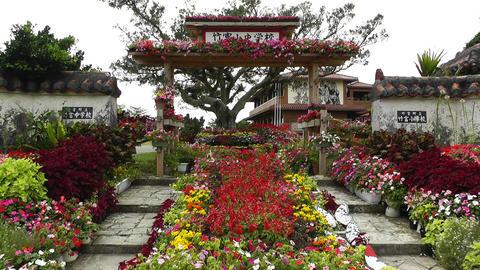 Okinawa Islands 1