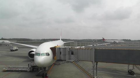 Tokyo Narita Airport Terminal 2 01 Stock Video Footage