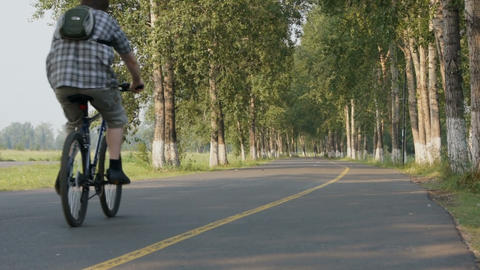 Man rides on the bicycle in the park Stock Video Footage