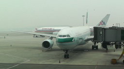 Beijing Capital International Airport 05 cathay pacific handheld Footage