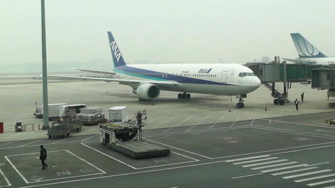 Beijing Capital International Airport 07 ana handheld Footage