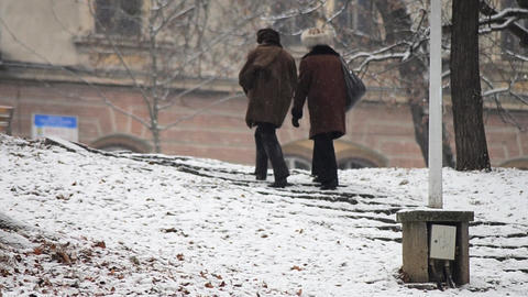 Two elderly women walking in a park, on a cold winter morning - 5 Footage