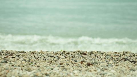 2504 sea surf on pebble beach Footage