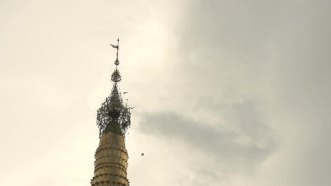 Pathein, pigeons flying over at Shwemokehtaw Pagoda Live Action