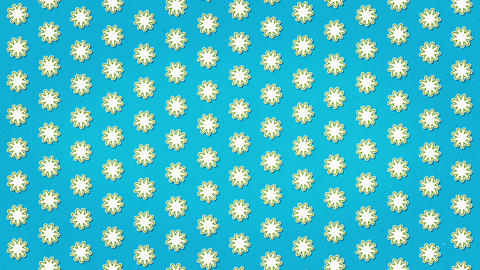 White Flowers Blue Clean Background Animation Seamless Looped Texture Animation