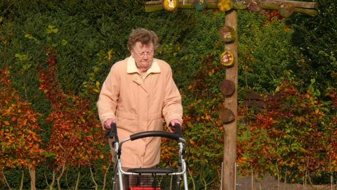pensioner with wheel walker in autumn park pan tilt 11749 Live Action
