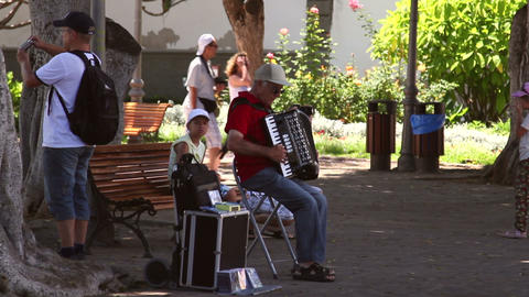 Older man playing on a accordion Footage