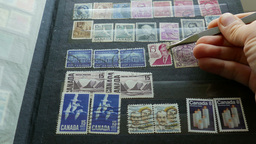Hobby. Philately. Stamp-collecting Footage