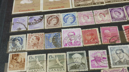An international stamp collection. Hobby. Philately Footage