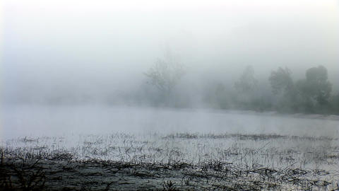 mist 1 Footage