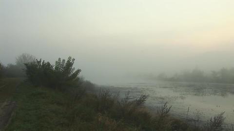 mist 3 Stock Video Footage