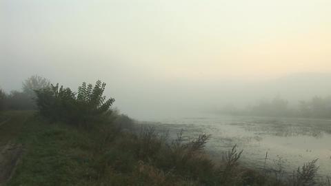 mist 3 Footage