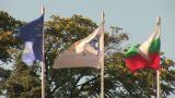Bulg Flags 3 stock footage