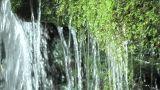 Mountain stream Footage
