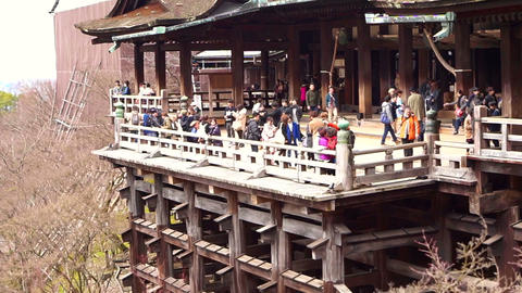 Kyoto, Japan - March 2015 - Kiyomizu dear Japanese world heritage landmark templ Footage
