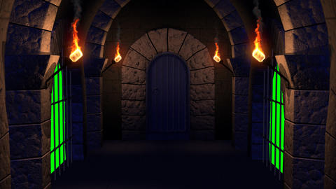 Dungeon Exit stock footage
