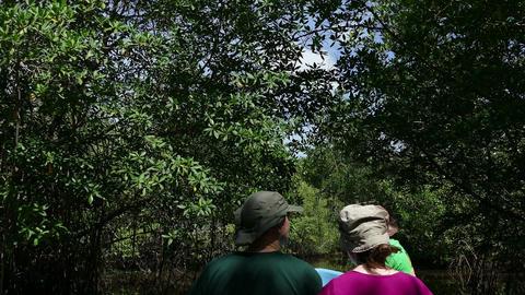 Cruising the mangroves of Juan Venado Island Nature Reserve Live Action
