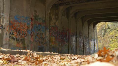 Autumn Grunge Tunnel View stock footage